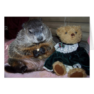 Pet Groundhog Maude com seu cartão de nota do