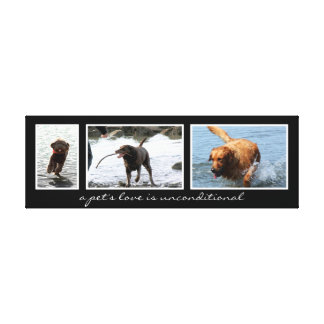 Pet Montage For Three Images Gallery Wrapped Canvas