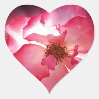 pétalas vermelhas claras adesivo coração