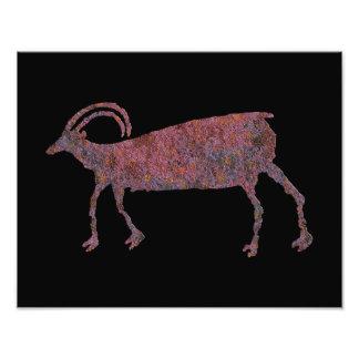 Petroglyph dos carneiros do Big Horn Impressão De Foto