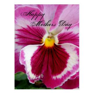 Petúnia fúcsia bonito do dia das mães cartão postal