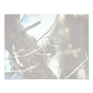 Pica-pau-cinzento do pigmeu convites personalizados