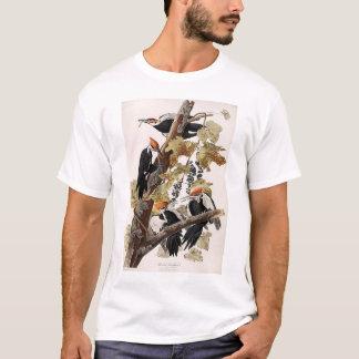 Pica-pau de Pileated Camiseta