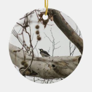 Pica-pau empoleirado - ornamento de cerâmica