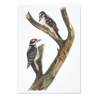Pica-pau peludo, John Audubon Convite 12.7 X 17.78cm