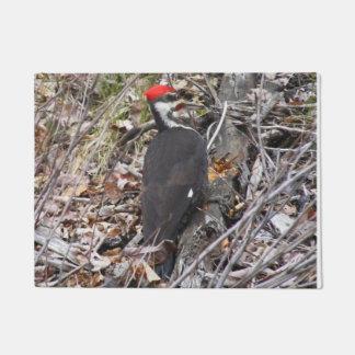 Pica-pau que Pecking a esteira de porta de madeira Tapete