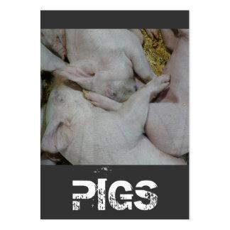 Pilha da fazenda ou do rancho de porco dos leitão cartoes de visita