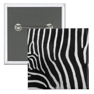 Pin do quadrado do teste padrão da listra da zebra boton