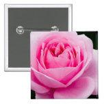 Pin do rosa do rosa Pastel Boton