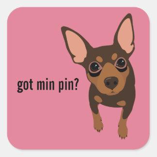 Pin obtido do minuto etiqueta do Pinscher diminuto