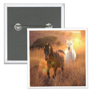 Pin quadrado de galope dos cavalos selvagens botons