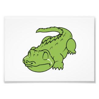 Pin verde de grito do travesseiro do botão da impressão de foto