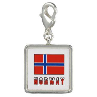 Pingente Bandeira de Noruega e neve da palavra
