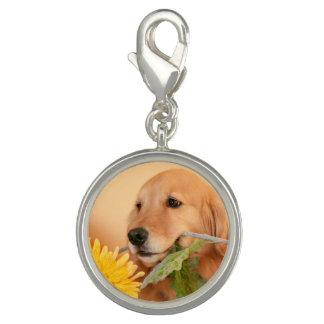 Pingente Cão bonito do golden retriever com flor amarela