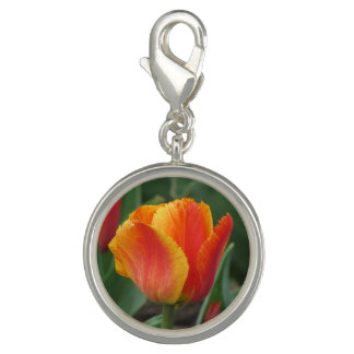 Pingentes Com Fotos Tulipa vermelha e amarela