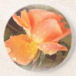 Pingos de chuva em rosas ..... porta-copo