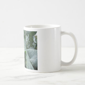 Pingos de chuva nas folhas da couve-flor caneca de café