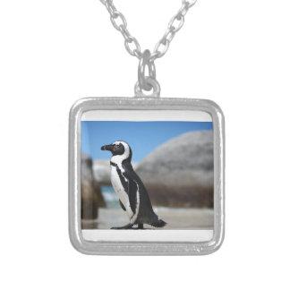 Pinguim africano colar banhado a prata