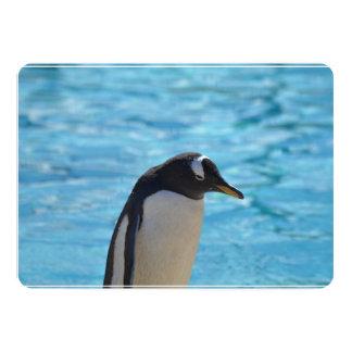 Pinguim bonito convite 12.7 x 17.78cm