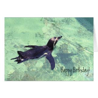 Pinguim Cartão Comemorativo