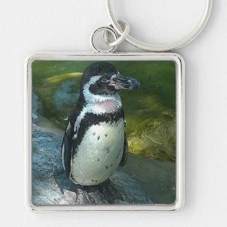 Pinguim Chaveiro Quadrado Na Cor Prata