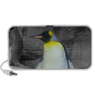 Pinguim de imperador caixinhas de som para mini