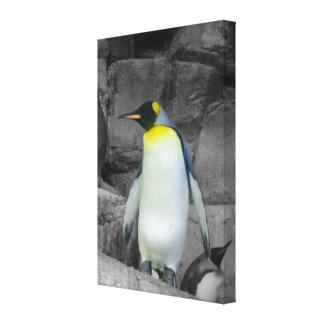 Pinguim de imperador impressão em tela