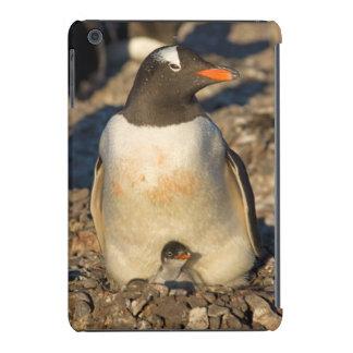 pinguim do gentoo, Pygoscelis papua, com Capa Para iPad Mini Retina