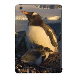 pinguim do gentoo, Pygoscelis Papua, pai com Capa Para iPad Mini Retina
