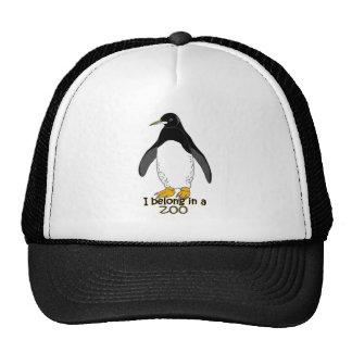 Pinguim do jardim zoológico boné