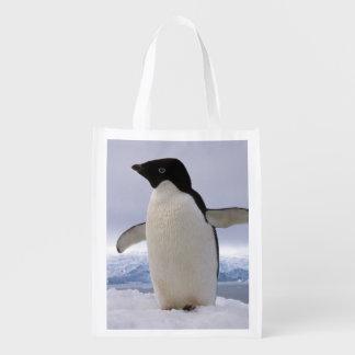 Pinguins a Antártica de Adelie dos pares Sacolas Ecológicas Para Supermercado