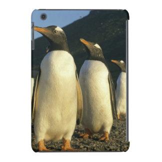 Pinguins de Gentoo, Pygoscelis papua), por do sol, Capa Para iPad Mini Retina