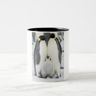 Pinguins de imperador com pintinho - caneca