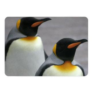Pinguins de marcha