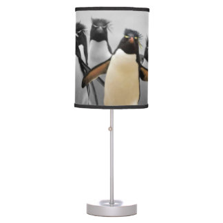 Pinguins de Rockhopper