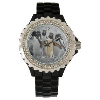 Pinguins de Rockhopper Relógio De Pulso