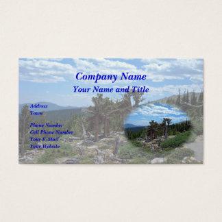 Pinheiro de Bristlecone Cartão De Visitas