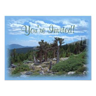 Pinheiro de Bristlecone, montagem Evans, Colorado Convites Personalizados