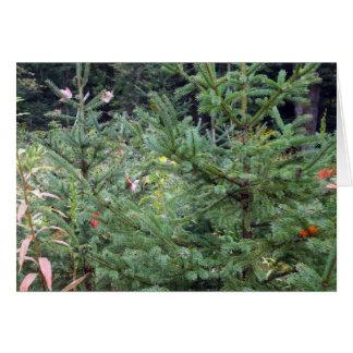 Pinheiros e folhas de bordo vermelhas cartão comemorativo