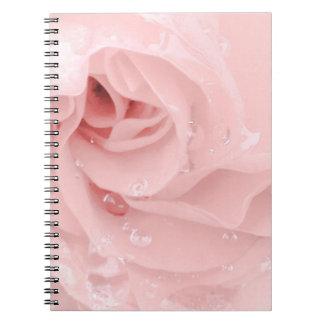 PinkRose com caderno das gotas