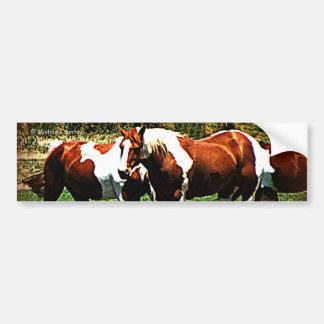 Pinte cavalos adesivo para carro