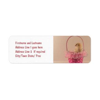 Pintinho amarelo do bebê na cesta cor-de-rosa boni etiqueta endereço de retorno