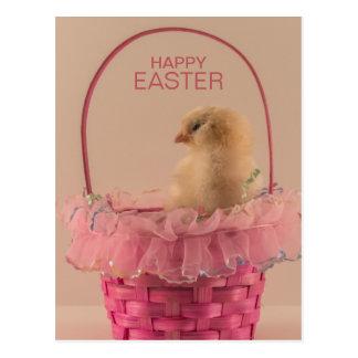 Pintinho amarelo do bebê na cesta cor-de-rosa cartão postal