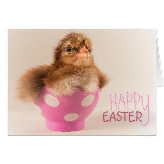Pintinho bonito do bebê no ovo da páscoa cartão comemorativo