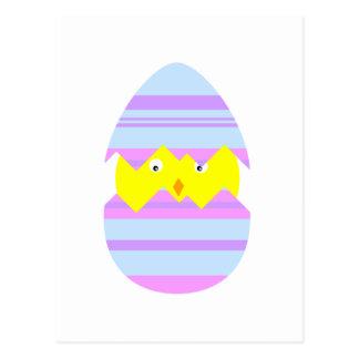 Pintinho da páscoa no cartão do ovo cartão postal