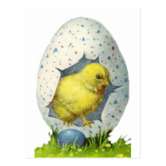 Pintinho e ovo da páscoa do vintage cartão postal