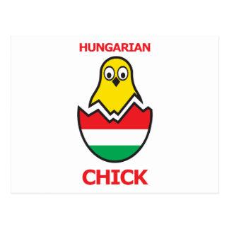 Pintinho húngaro cartão postal
