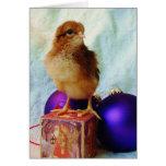 Pintinho no ornamento do natal vintage cartões