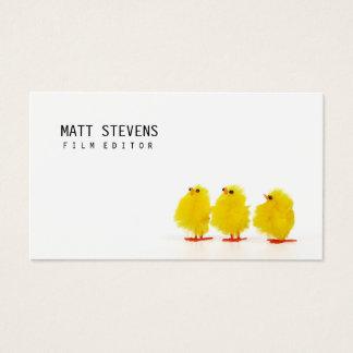 Pintinhos bonitos do cartão de visita do editor do