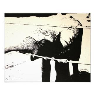 Pintura alto contraste do elefante impressão fotográfica
